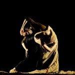 Flamenco modern, la Intalnirile JTI