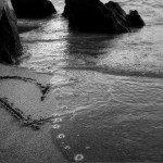 Declarație de dragoste