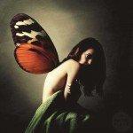 Fluturii amiezii