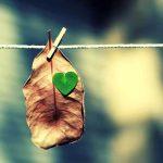 Inimă…