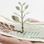Copaci care cresc in sacosele de cumparaturi