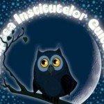 Noaptea Institutelor Culturale 2012