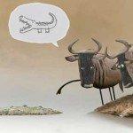 Poveste cu antilope