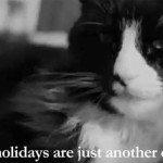 Sărbătorile de iarnă sunt doar o altă scuză…