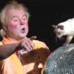 Teatrul de pisici din Moscova