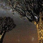Nopți namibiene