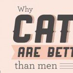 13 motive pentru care motanii sunt mai buni decât bărbații