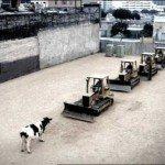 Tiananmen, 24 de ani mai târziu