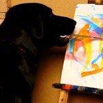 Arbor, câinele care pictează