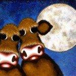 Cinci lucruri mai puțin știute despre… vaci