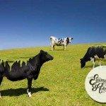 Îndrăznește tu și pictează vaca…