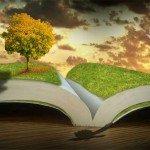 Uneori, ar trebui să învăţăm să plantăm peri…