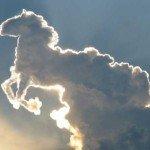 Trebuie neapărat să visez un cal!