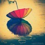 10 fotografii în ploaie
