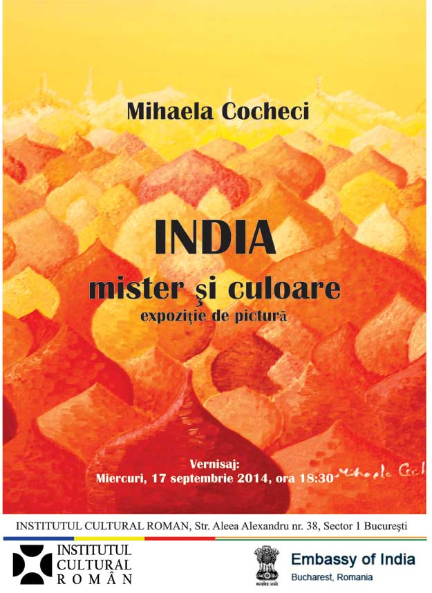 India-Mister-si-Culoare