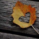 Un foșnet de frunză