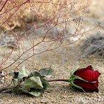 Amintirile marilor iubiri