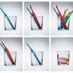 Viața: o explicație în trei imagini