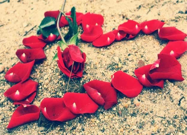 petale-dorinte