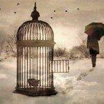 Poetul și pasărea