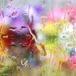 Ploaie de mai