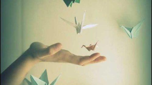 Ziua în care au zburat cocorii