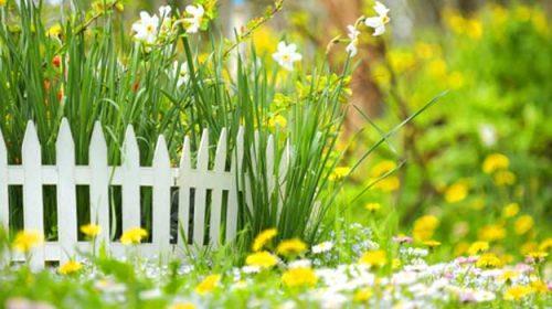E mult prea simplă primăvara