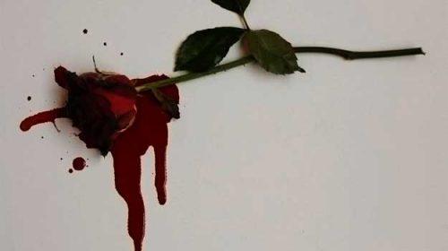 în semn de trandafir