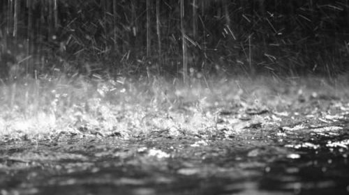 Dansam în ploaie