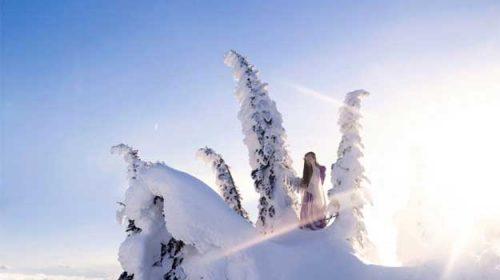 Pârtia de schi