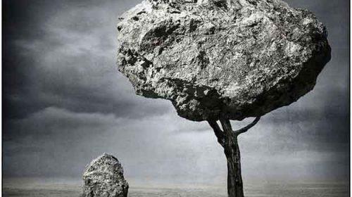 În memoria pietrei, o poveste