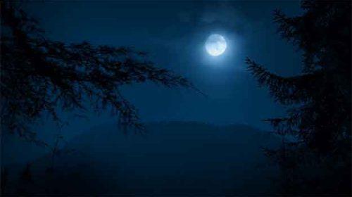 Peisaj nocturn