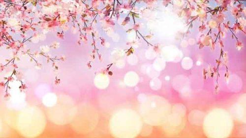 O nouă primăvară