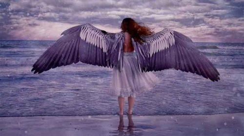 Te vreau, îţi dau aripi să zbori